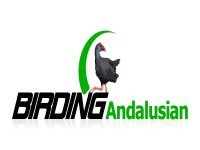Birding Andalucia