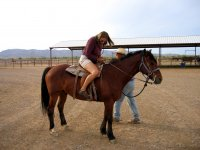 Meet LLeida on horseback