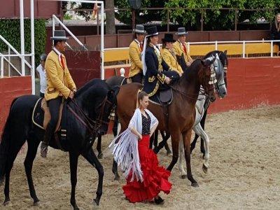 Show flamenco, ecuestre y cena en Mijas