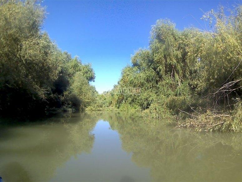 Disfrutando de la calma del Parque Natural de la Sierra de Andújar
