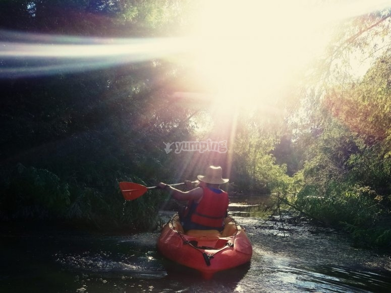 Ruta en kayak por rio andujar