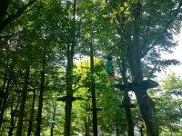 森林中间的邮编线