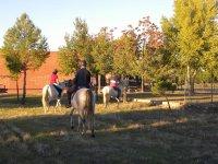 A cavallo tra alberi