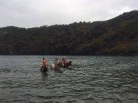 En el agua con los equinos