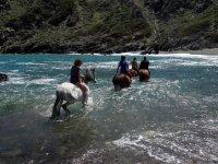 Grupo a caballo entrando en el agua