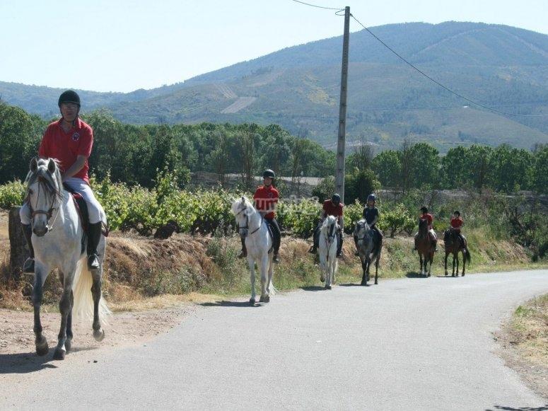 Horseback trip in Queizas