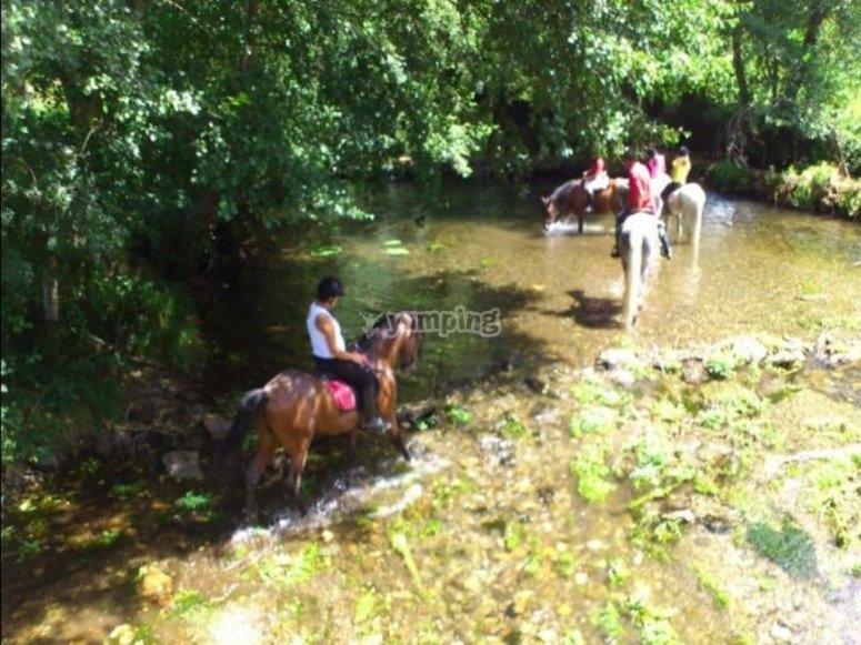 在Tamega河骑马