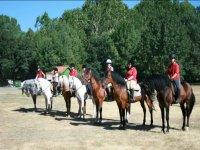Horseback route in Verin