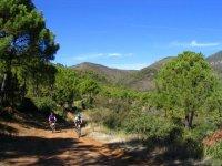 Excursiones en bicicleta de montaña en Málaga