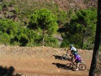 Bici de montaña para todos los públicos