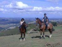 Horse route through Urdax
