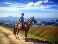 Contemplando las vistas con nuestras rutas a caballo