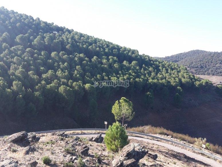 Ruta en sierra Morena