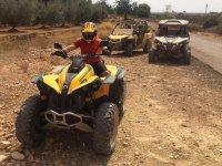 Excursión en quad biplaza en Alcocéber 1h 30 min