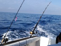 Fishing trips in Alicante