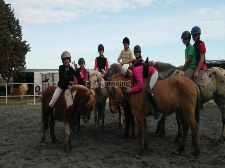 Clases de equitacion por niveles