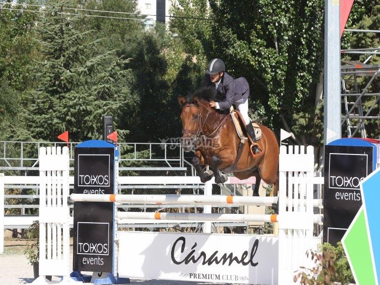 Clases de equitacion en Madrid