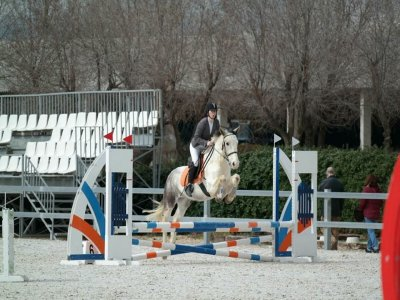 在圣塞巴斯蒂安德洛斯雷耶斯骑马课程