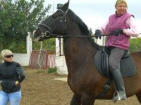 Horseback routes without experience