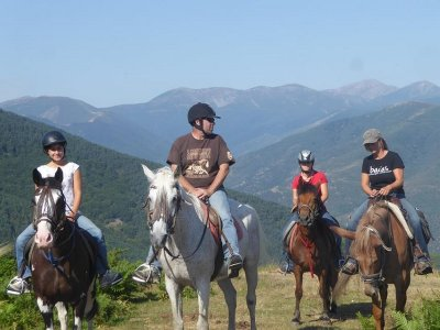 1h Horseback Ride in Sierra de la Demanda