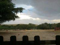 照顾马匹Eduka训练营