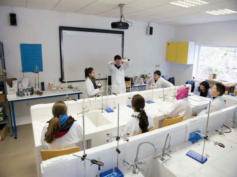 Workshop di scienze in inglese