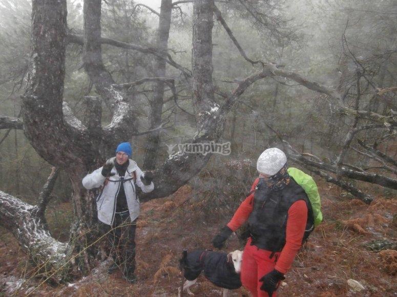 Senderismo en la sierra de Albaceete