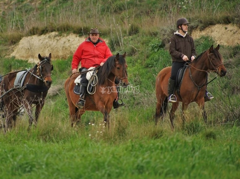 Riding across the fields on the horse
