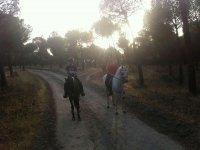 设施骑马在自然的环境设施