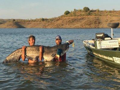 Jornada de pesca de siluro en Alcántara
