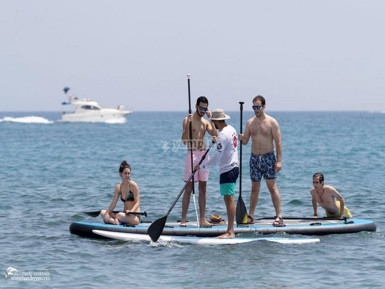 Paddle surfing with those of the office