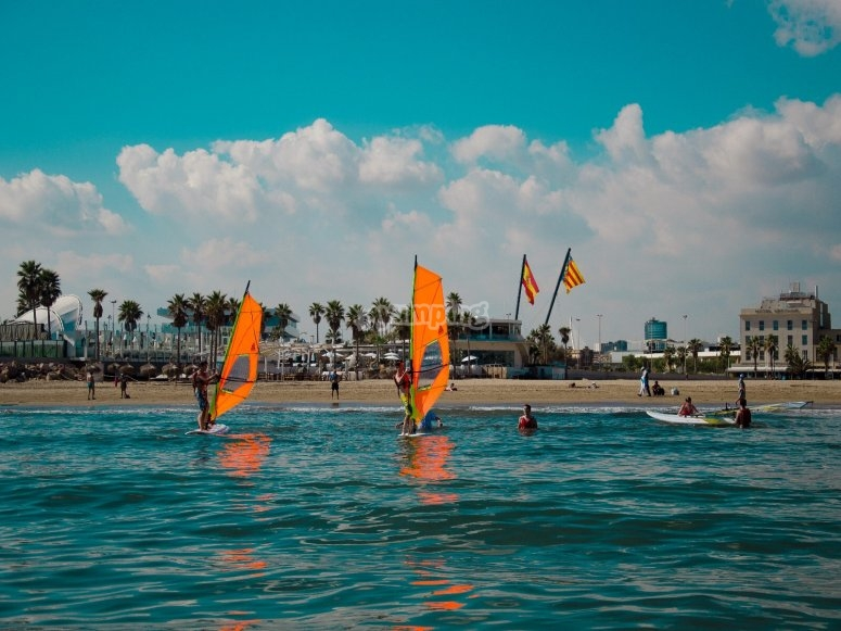 Round of windsurfing