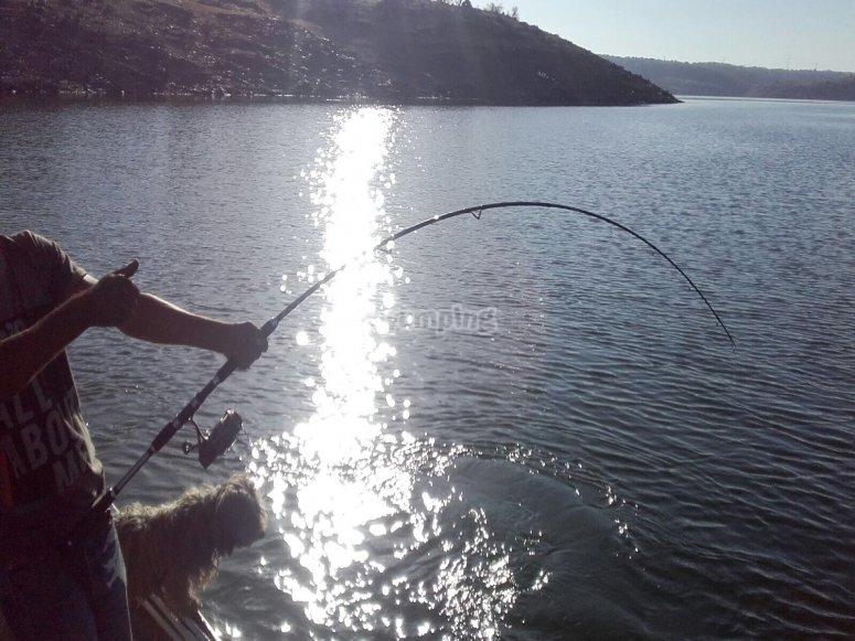 Disfrutando de un dia de pesca desde la embarcacion