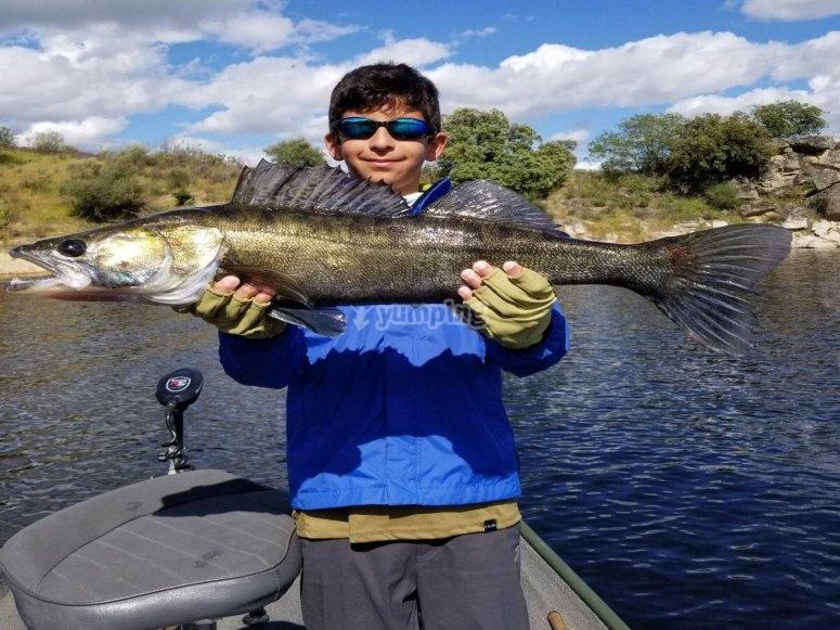 Levantando el pescado