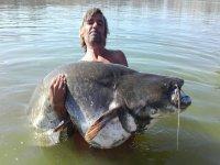 Pêcher un poisson-chat dans le Tage