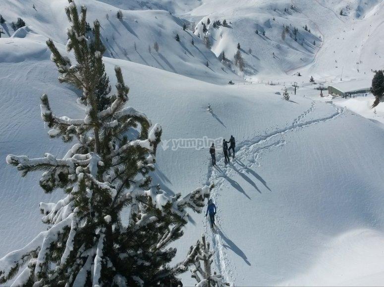 Breve ruta por la nieve con raquetas