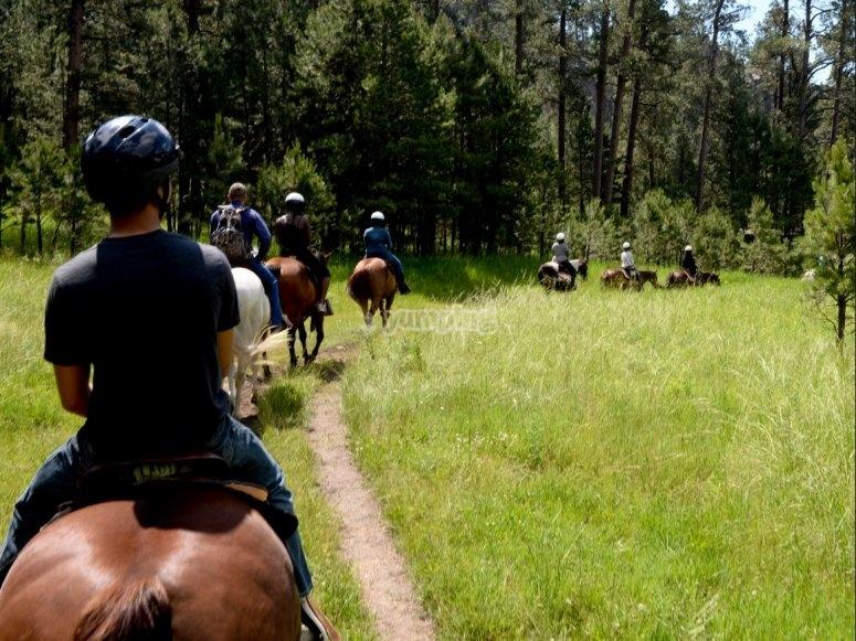 Paseos a caballo para toda la familia