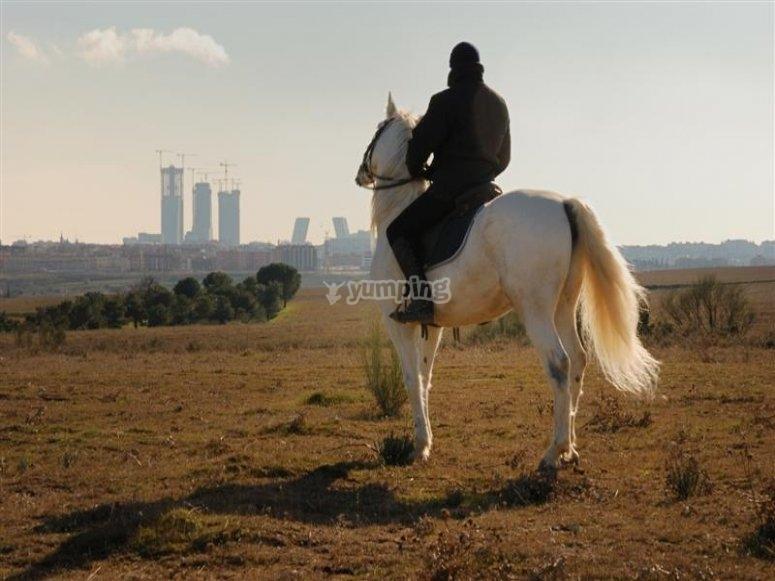 A caballo viendo el skyline de Madrid