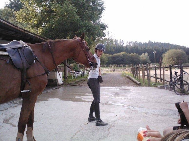Control del caballo