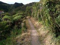 导游的山地自行车旅行体验的兴奋山地自行车山地自行车冒险万岁难以置信的风景