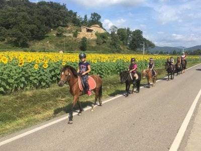 Horse Riding in La Garrocha Pictures and Meal