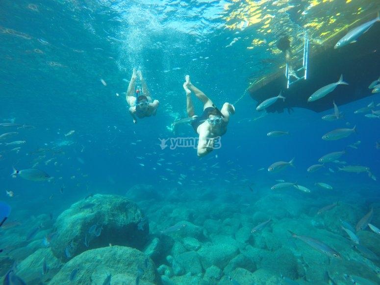 Snorkel junto al barco