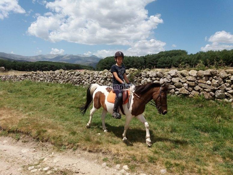 Nino sobre caballo adaptado a el