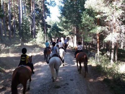 Horse riding weekend in El Pardo 1 h
