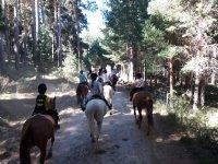 Por los caminos a caballo
