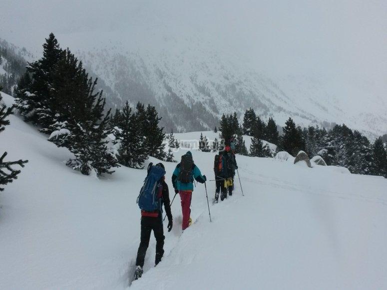 Con las raquetas de nieve en fila
