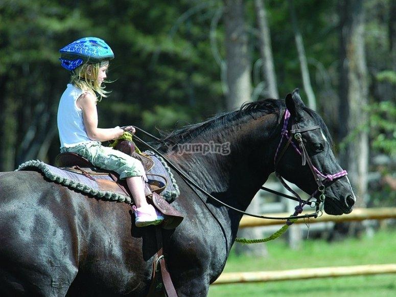 Practicas de equitacion en pista