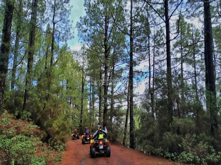 Guided quad tour across La Cumbre