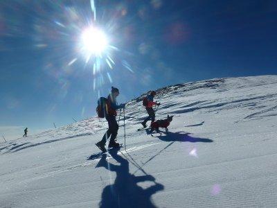 2h snowshoes trip in Rasos de Peguera