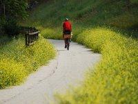 Via Verde del Aceite en bici